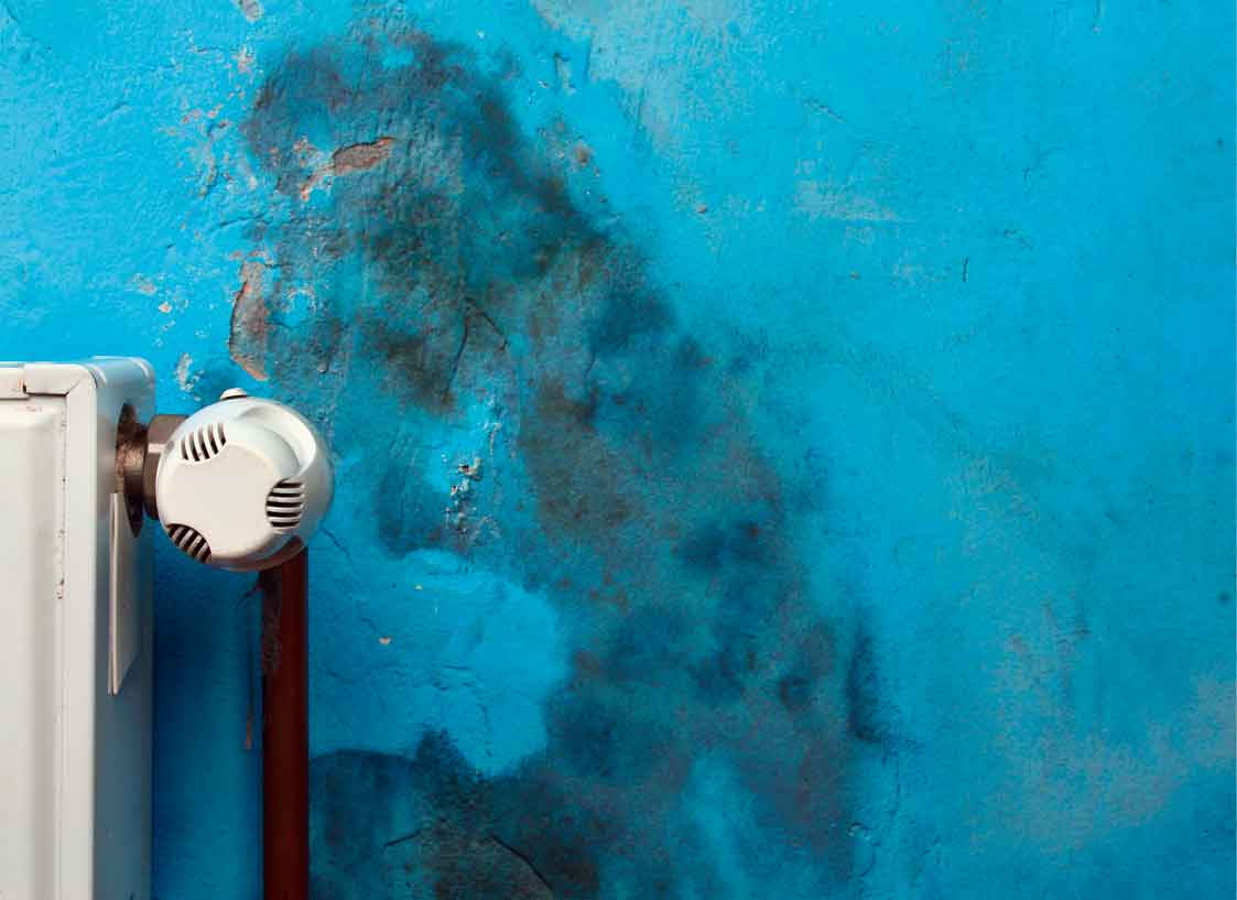 humidite murs
